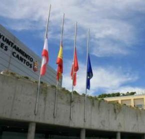 Pleno Municipal Extraordinario de Organización Municipal (02/07/2015)